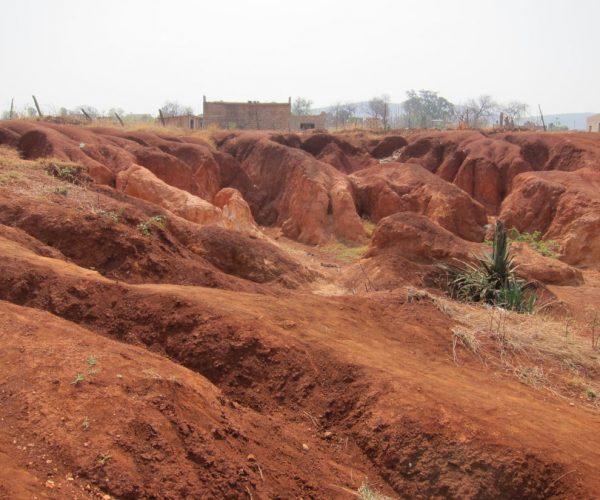 Prevent Soil Erosion