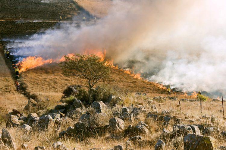 Choosing Your Firefighting Equipment