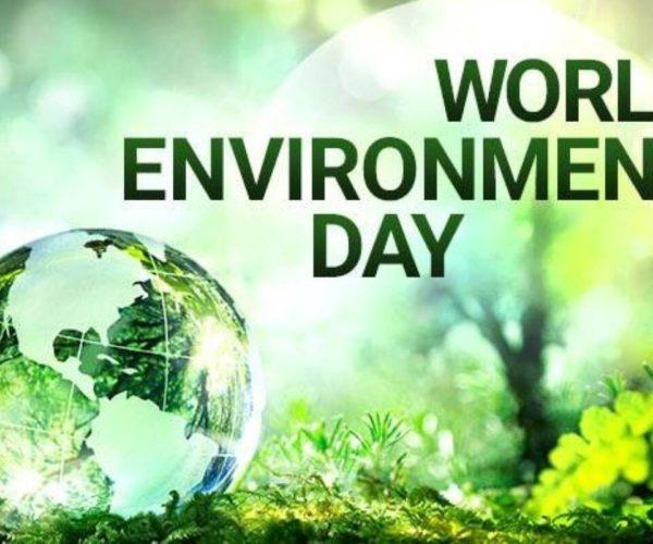 SA environmental groups win big legal victory