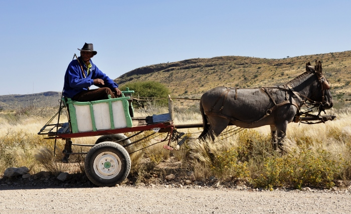 Animal Traction for the Smallholder