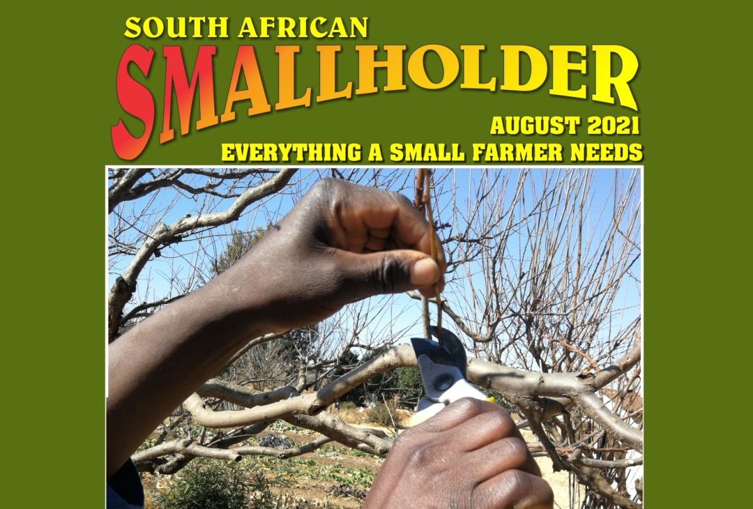 Latest SA Smallholder Magazine Now Out