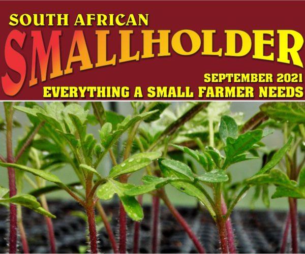 Latest SA Smallholder Digital Magazine Out Now